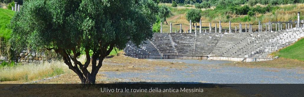 Ulivo tra le rovine della antica Messinia